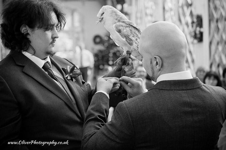Ring bearing Owl wedding pictures