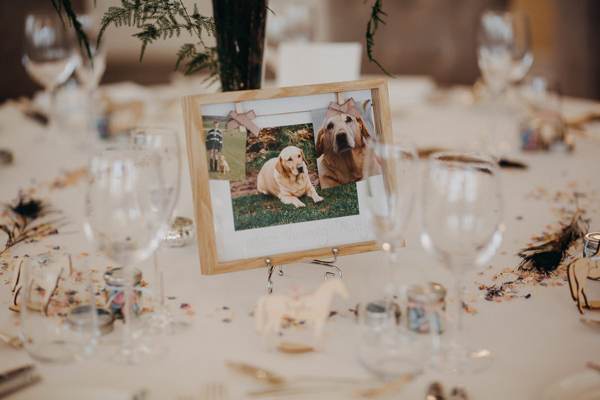 dogs picture wedding decor